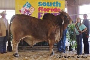 Skeeter-SouthFloridaFair